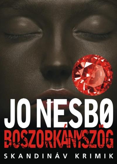 Jo Nesbo: Boszorkányszög (Animus, 2012)